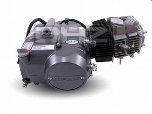 New 125cc Lifan Type R Head Racing Engine  1p54fmi  Pit