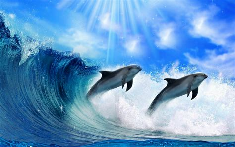 Dolphin Animated Wallpaper - animated dolphin screensavers wallpaper 46 images
