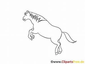 Pferde Bilder Zum Nachmalen