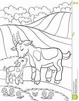 Goat Coloring Pages Mountain Funny Printable Getdrawings Vector Getcolorings sketch template
