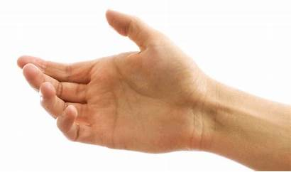 Hands Holding Clipart Hand Arm Arms Transparent
