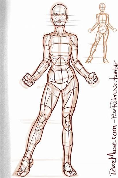 Poses Reference Drawing Anatomy Human Posemuse Pose