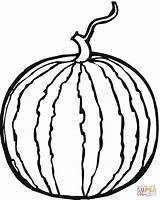 Coloring Watermelon Pages Whole Supercoloring Printable Drawing sketch template