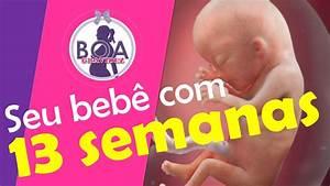 O Seu Beb U00ea Com 13 Semanas De Gesta U00e7 U00e3o