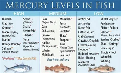 mercury fish levels low tuna poisoning pregnancy swordfish foods avoid during merkuri mackerel mahi omega shark cod king salmon mercurio