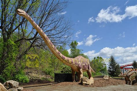 Hlt Long Neck Park Dinosaur Model Jurassic Dinosaur