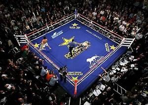 Mgm Grand Garden Arena Las Vegas United States Of