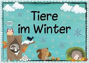 Basteln Winter Kindergarten : pinterest deutschland germany ~ Eleganceandgraceweddings.com Haus und Dekorationen