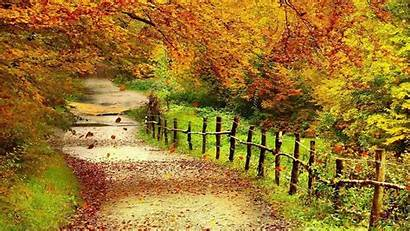 Scenery Wallpapers Autumn Wallpapers13 Fall Background Desktop