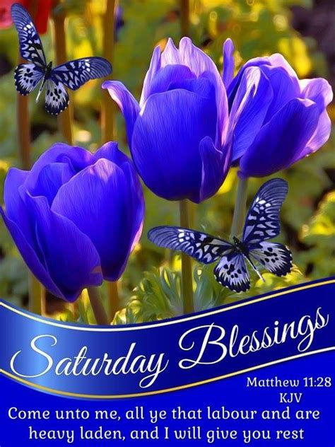 Best Good Morning Saturday Ideas And Images On Bing Find What