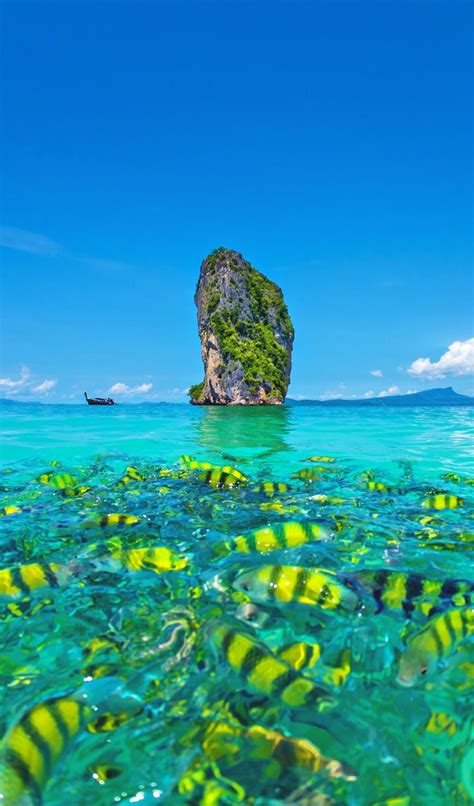 The Ultimate Guide To Phuket Things To Do Extraordinary