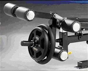 Powertec Workbench Levergym WB-LS14 Yellow   eBay