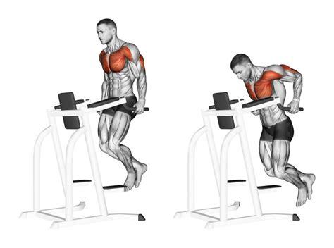 esercizi aerobici da fare in casa esercizi pettorali i 3 migliori da fare esecuzione