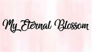 My Eternal Blossom Todoroki X Reader Bandages