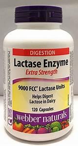 Lactase : définition de lactase