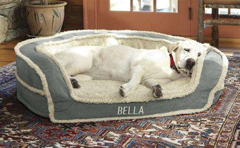 dog bed bolster foam memory oversized orvis horseshoe pet secure