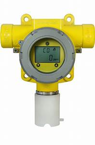 Toxic And Oxygen Gas Detector For Explosive Atmospheres