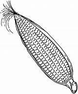 Corn Cob Sweet Coloring Drawing Pages Getdrawings Books sketch template