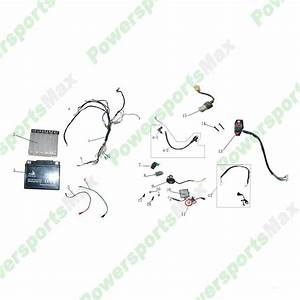 Boulder B1 Electrical Assembly Atvs Parts
