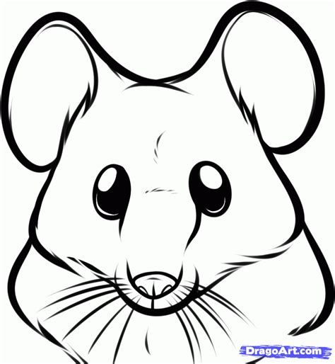 draw  mouse face step  step forest animals