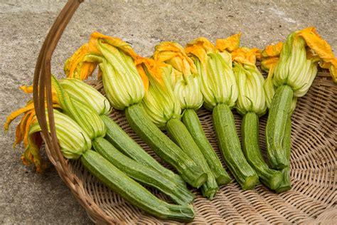 cuisiner des fleurs de courgettes les fleurs commestibles dans mon jardin et leurs saveurs
