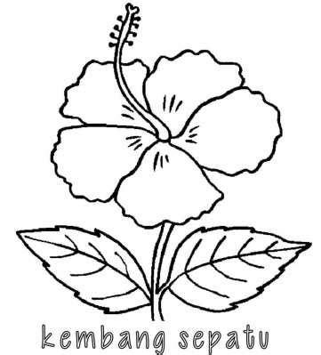 kumpulan mewarnai gambar bunga indonesia alamendahs blog