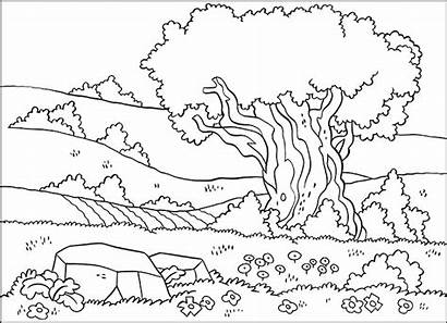 Hills Scenery Fields Pages Landscape Sceneries Coloring