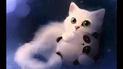 Cat Funny Wallpapers Cats Kittens Kawaii Desktop