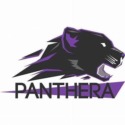 Panthera Esports Smite Square Team Gamepedia