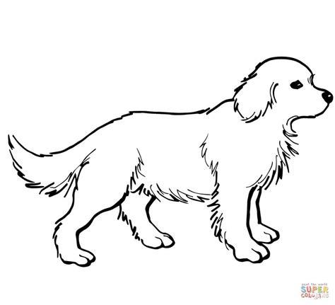 Golden Retriever Kleurplaat by Golden Retriever Puppy Kleurplaat Gratis Kleurplaten Printen