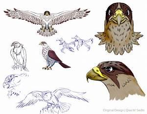 Falcon Design