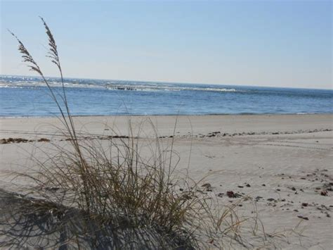 Hammocks State Park Nc by Hammocks State Park Expansion Announced