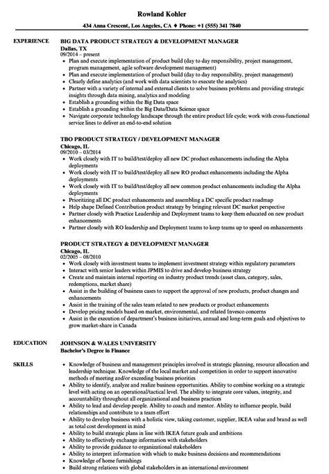 Strategy & Development Manager Resume Samples | Velvet Jobs