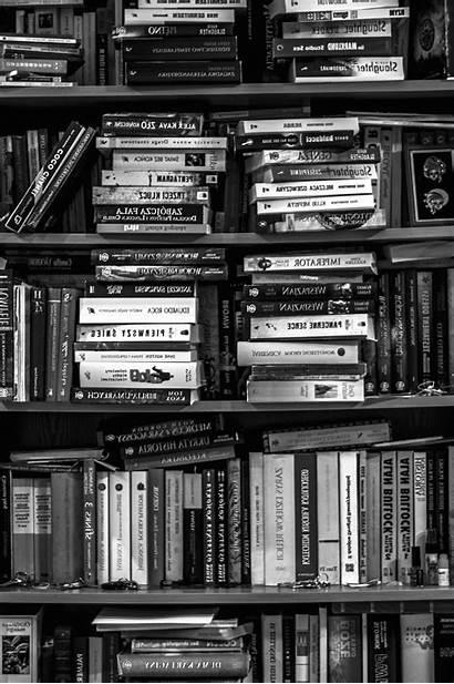Books Bookshelf Bookstore University Bookcase Shelf Study