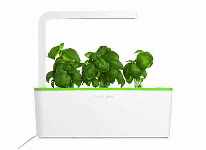 Herb Kit Starter Garden Smart Growing Herbs