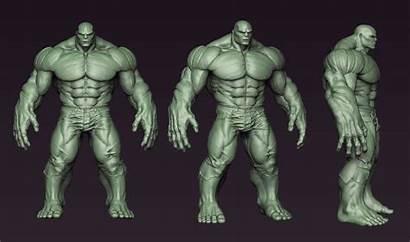 Hulk Reference Anatomy Zbrush Avengers Drawing Poses
