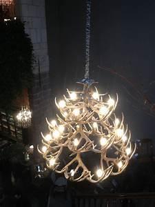 Lustre Bois De Cerf : lustre en bois de cerf vu lille d co int rieur pinterest lustre en bois bois de cerf ~ Teatrodelosmanantiales.com Idées de Décoration