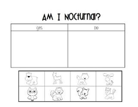 nocturnal animals preschool lesson plans nocturnal animals pinguinos animals 418