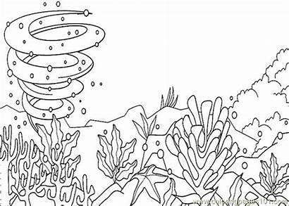 Coloring Ocean Pages Floor Animal Underwater Printable