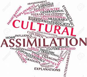 List of Synonyms and Antonyms of the Word: Assimilation