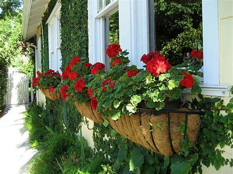 wonderful diy window box planters home design