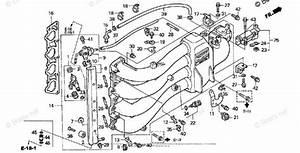 Wiring Diagram  34 Honda Outboard Parts Diagram Online