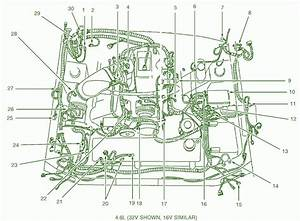 1962 Ranchero Engine Wiring Harnes
