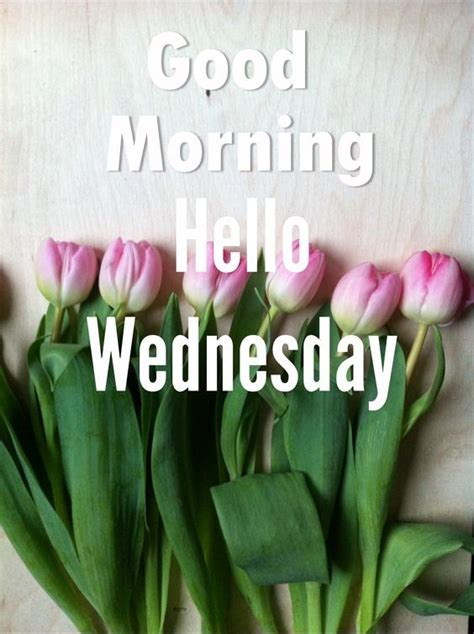 good morning  wednesday pictures   images