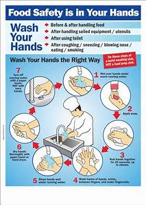 Food Safety is in Your Hands | Work | Pinterest | Hands ...