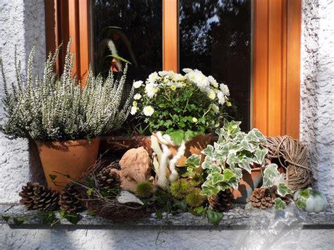 Herbstdeko Fenster Aussen by Herbstdeko Auf Der Fensterbank Bilder Und Fotos Garten