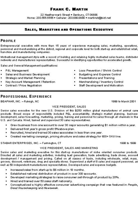 marketing sales executive resume examples sample