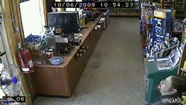 people    drunk    level  gifs