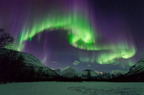 tromso norway northern lights tour small group aurora hunt northern lights tour from tromso