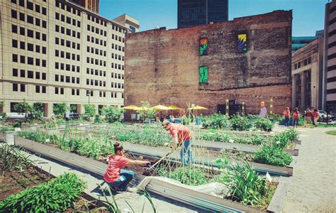 From Floating Food Forests To Vacant Lot Crops